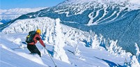 single-ski-big.jpg