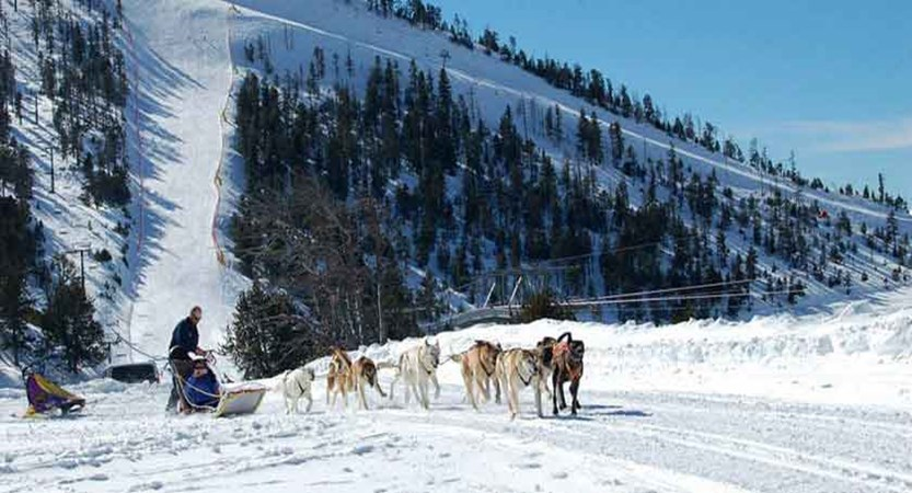 Andorra_Arinsal_Dog-sledding.jpg