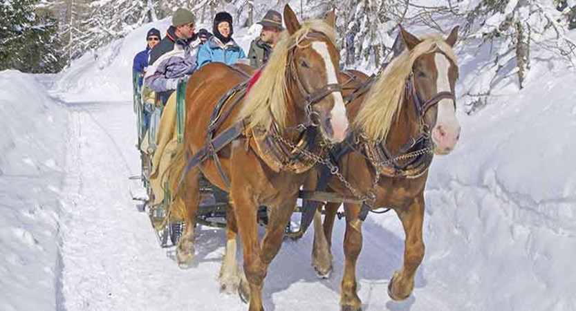 austria_bad-kleinkirchheim_horse_cart.jpg