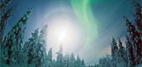 winter-wonderland-big.jpg