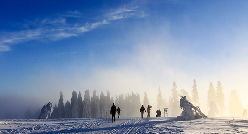 Austria_Seefeld_Landscape-view2.jpg