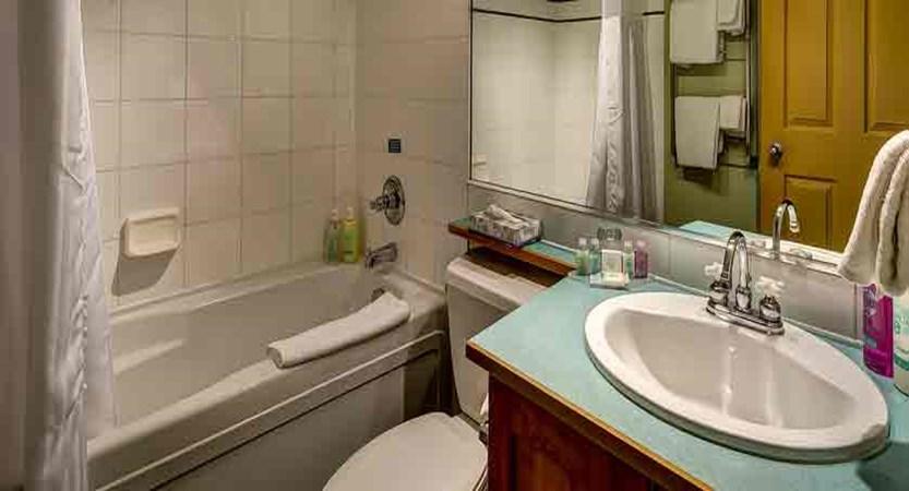 ada_whistler_coast-blackcomb-suites_bathroom.jpg