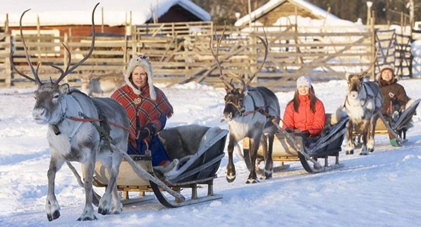 finland_lapland_levi_reindeer-safari.jpg