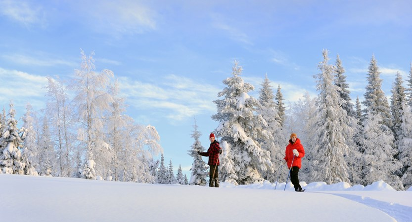 finland_lapland_levi_snow-shoe-walking.jpg