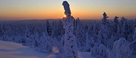 finland_lapland_yllas_winter.jpg