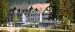 Hotel Jezero, Lake Bohinj, Slovenia - Hotel Jezero from the lake, Bohinj.jpg