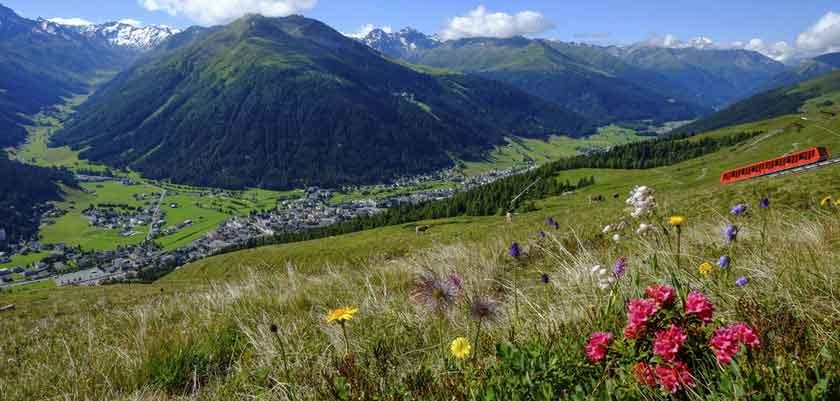 Switzerland, Graubünden, Davos, Valley-view-summer