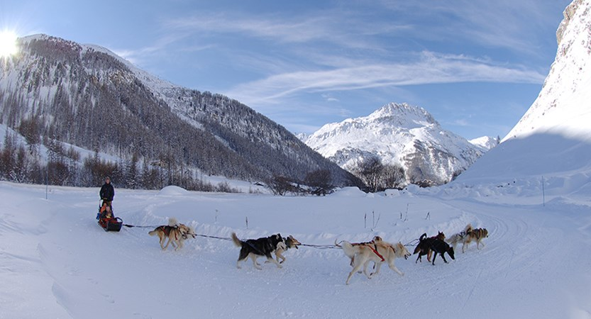 France_Espace-Killy-Ski-Area_Val-dIsère_Dog-sledding.jpg