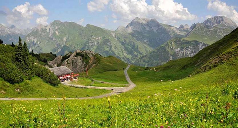 Austria_Lech-summer_fields-mountains.jpg