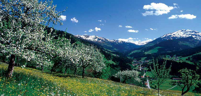 The Wildschönau Valley.jpg