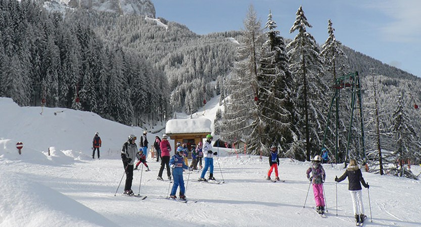 Italy_The-Dolomites-Ski-Area_Selva_Skiing-piste-trees.jpg