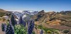 Funchal-scenery.jpg