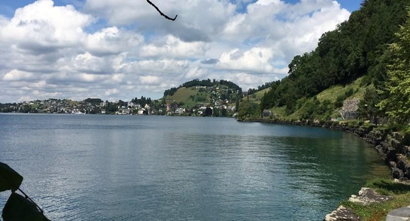 lake sdie walk 2.jpg