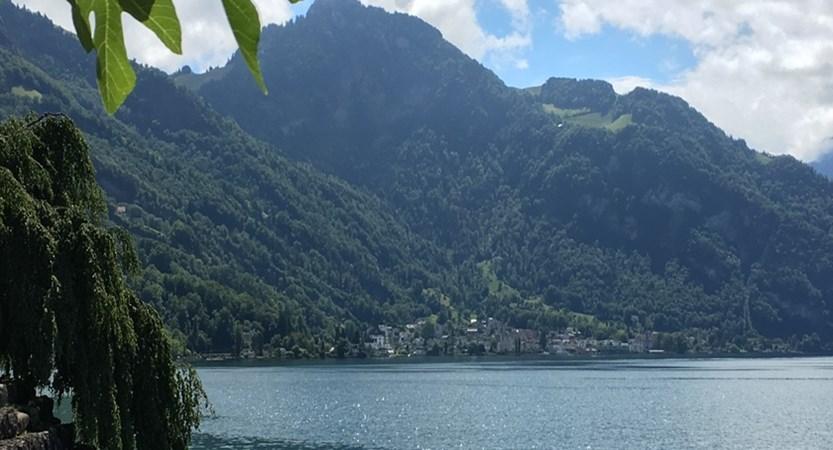 Lake side walk between Weggis and Vitznau.jpg