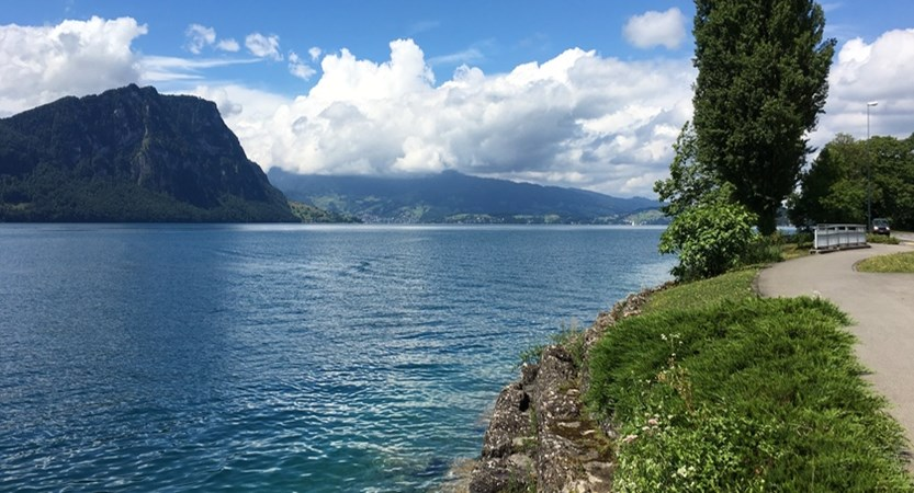 lake side walk.jpg