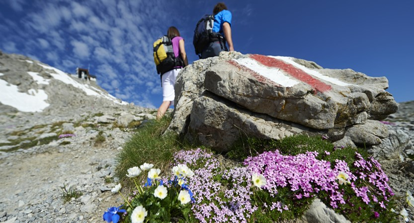 Switzerland, Graubünden, Davos, Hiking (1)