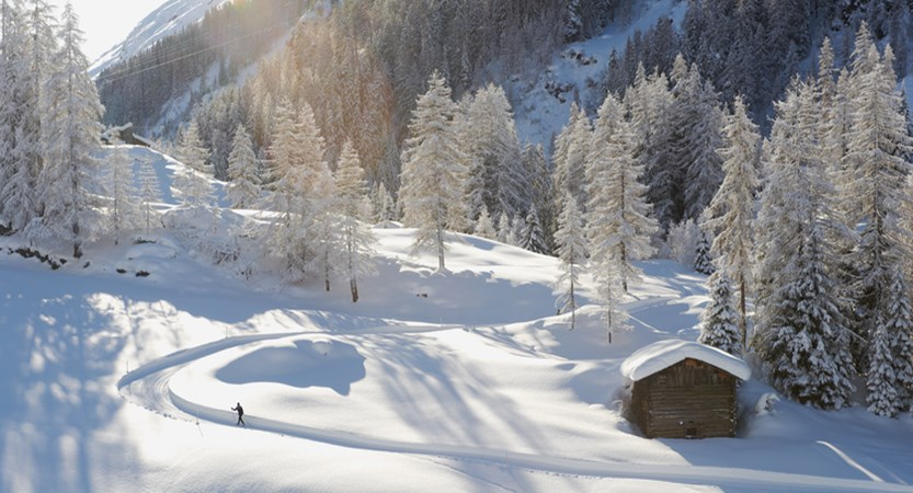 Cross country in Davos.jpg
