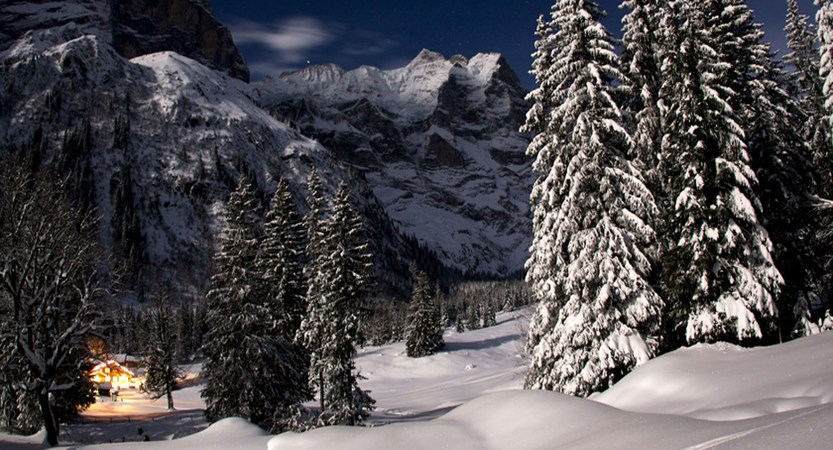 Switzerland_Jungfrau-ski-region_Grindelwald.jpg