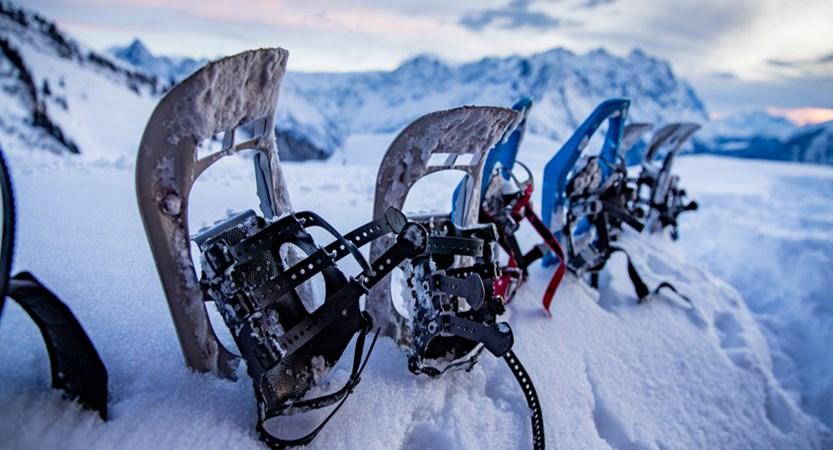 Snowshoeing at Haslital.jpg
