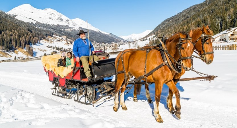 Horse-Drawn sleigh ride.jpg