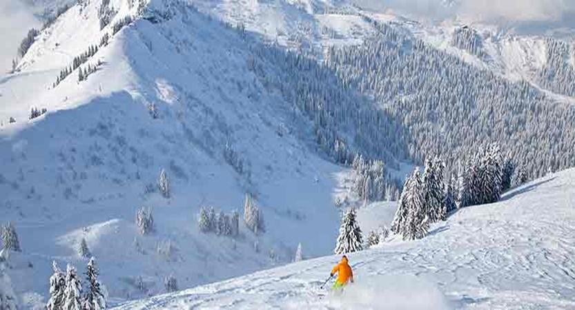 france_portes-du-soleil_morzine_Skier.jpg