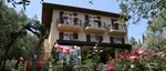 Hotel Degli Olivi Exterior.jpg