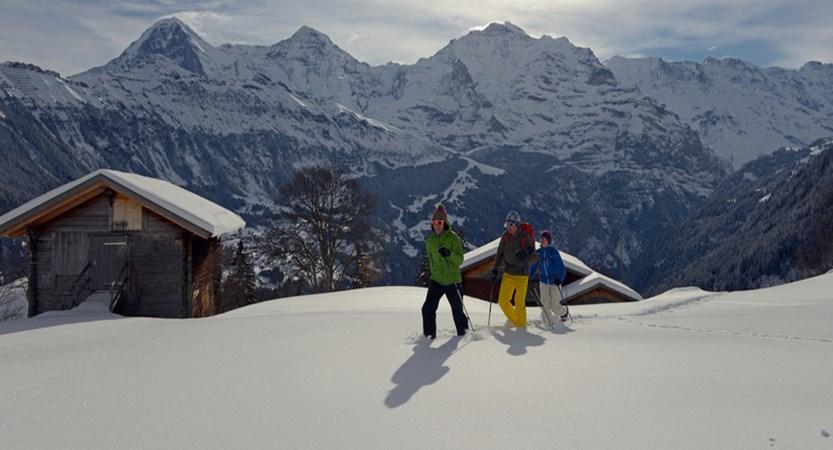 Snowshoeing in Isenfluh .jpg