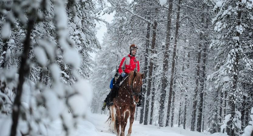 Levi_HorseRiding.jpg