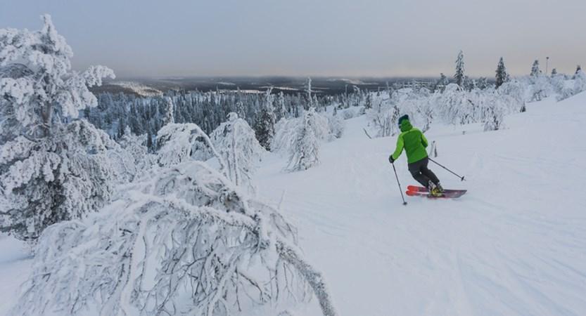 Levi_Skiing2.jpg