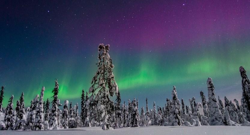 Levi_Northern Lights2.jpg