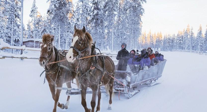 Finland_Saariselka_Horse Sleigh.jpg