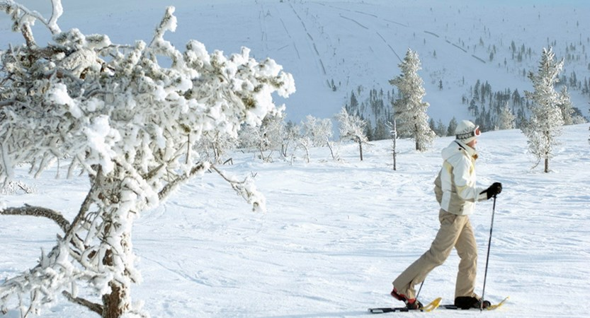 Finland_Saariselka_Snowshoe.jpg