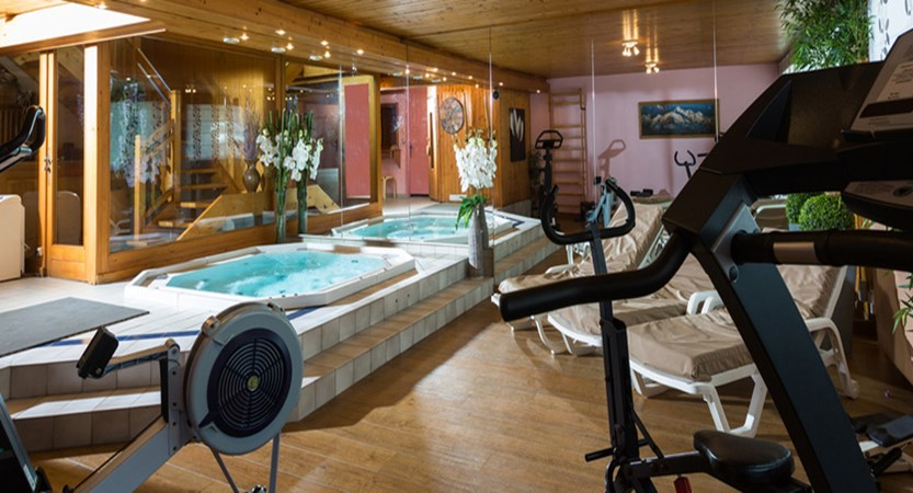 Jacuzzi and fitness area
