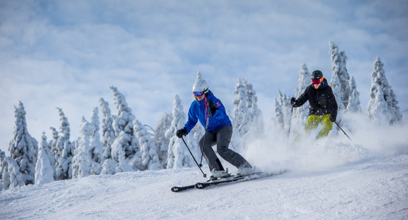 Tremblant tree skiing 31941553241_12823d0772_o.jpg