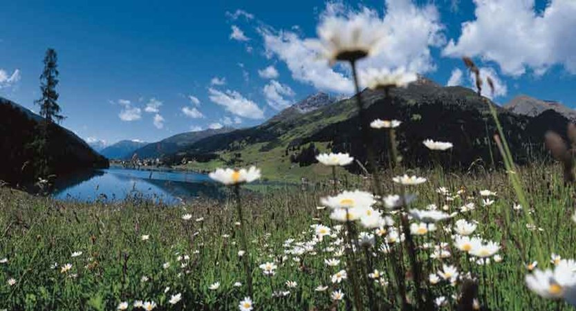 switzerland_graubuenden-region_davos_lake-hills-view.jpg