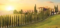 Tuscany_Landscape_Italy.jpg