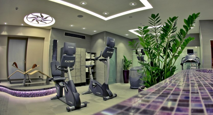 Hotel Suisse Majestic, Montreux, Switzerland - Fitness area .jpg