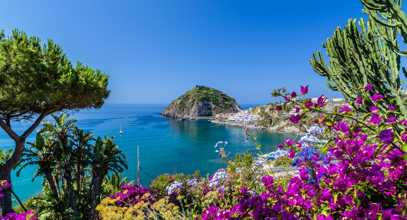 Ischia bougainvillea.jpg