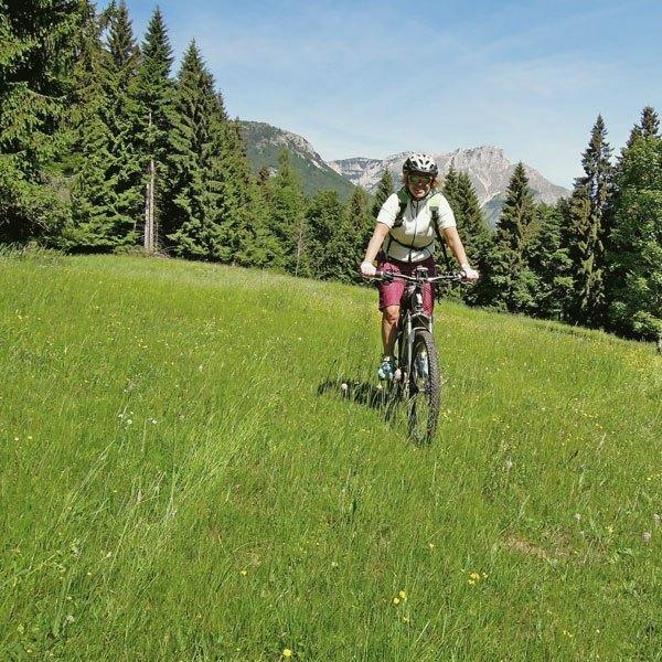 /media/13073033/cycling-holidays.jpeg
