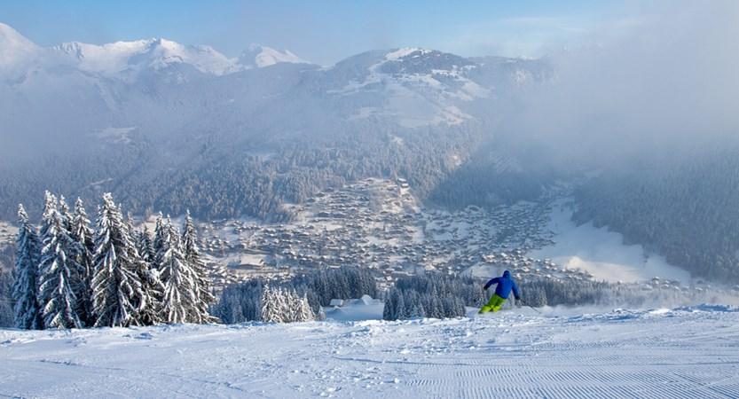 Skier on Pleney.jpg