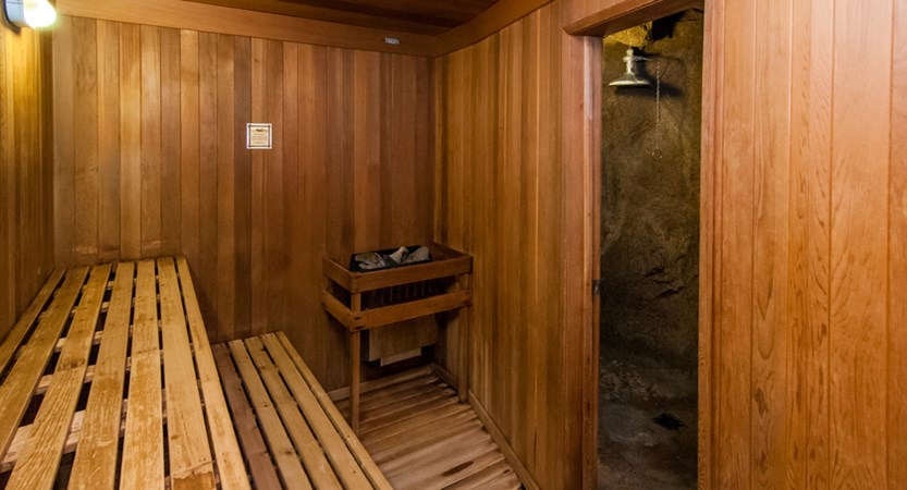 156_Fox_Hotel_and_Suites_Sauna_Dry.jpg