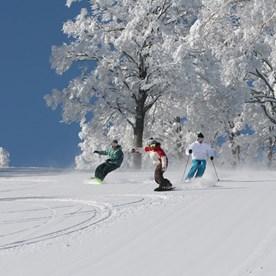 Ski_Japan.jpg