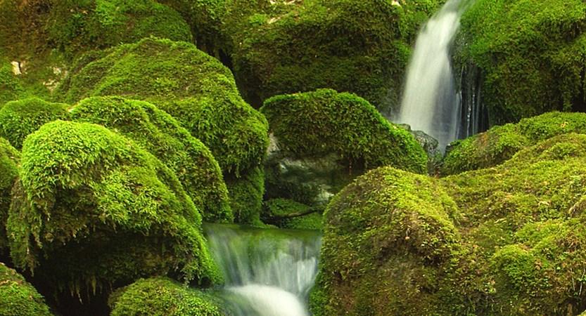 Slovenia Bovec  waterfalls 41.jpg