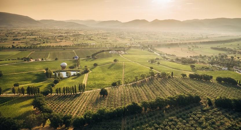 Arnaldo_Caprai_Wine_Estate_Landscape.jpg
