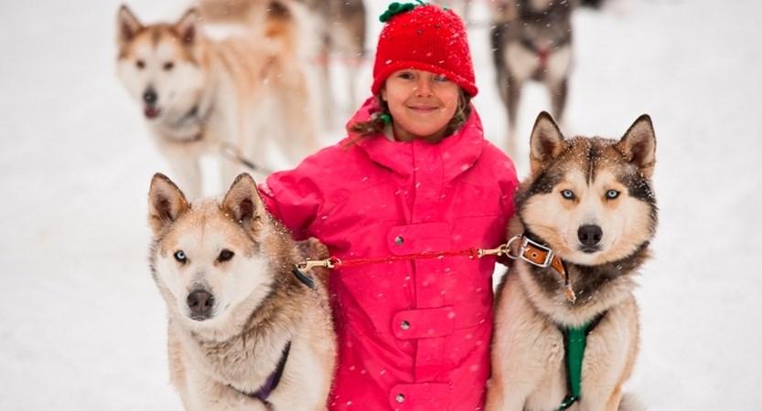 fernie canada huskies