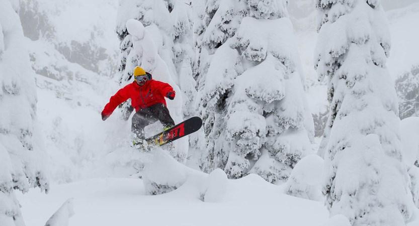 fernie canada snowboarder trees