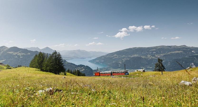 Schynige-Platte Switzerland