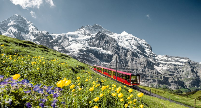 Train from Scheidegg up to Jungfrau Joch and the Sphnix Switzerland