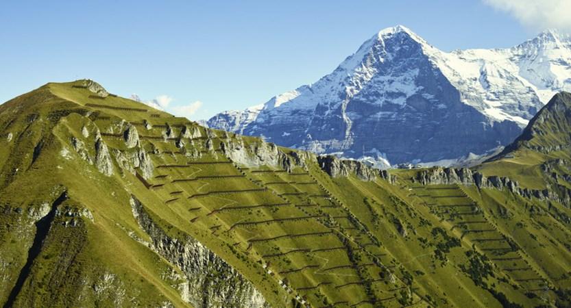 Männlichen Mountain Grindewald Switzerland