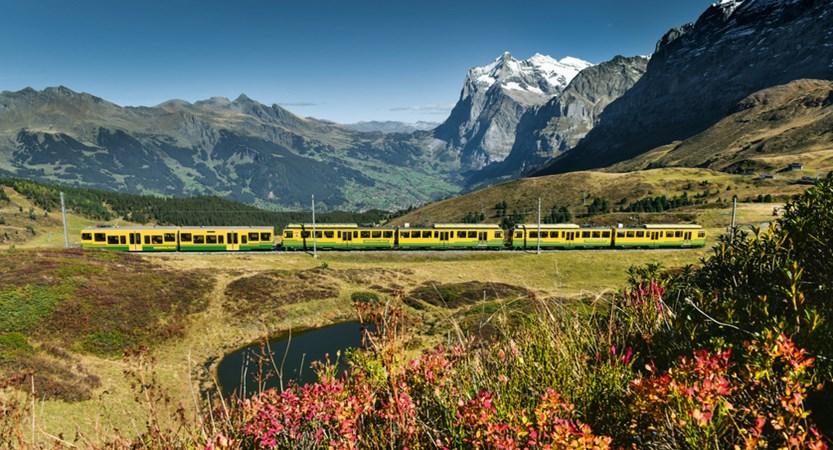 Wengeralpbahn to Grindelwald Train Switzerland